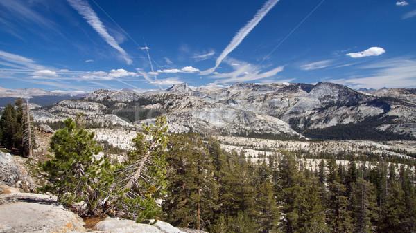 Nevada panoramique vue parc national de yosemite arbre beauté Photo stock © MichaelVorobiev