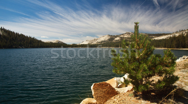 Lago panorâmico ver yosemite EUA natureza Foto stock © MichaelVorobiev