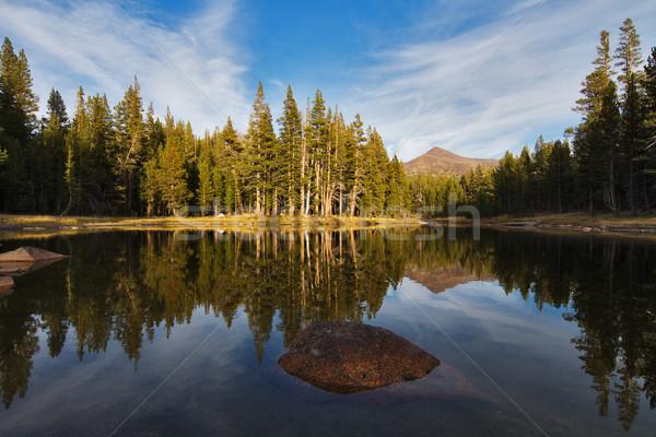 Mały jezioro wygaśnięcia widoku California Zdjęcia stock © MichaelVorobiev