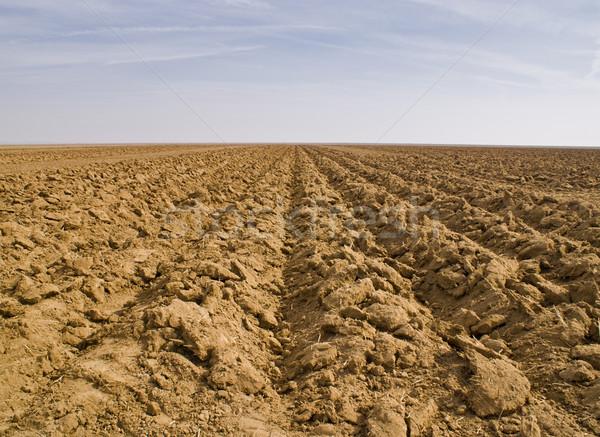 почвы небе сельскохозяйственный области Калифорния параллельному Сток-фото © MichaelVorobiev
