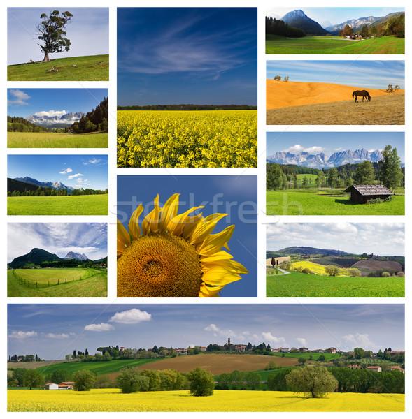 été couleurs carte postale collage nuages soleil Photo stock © MichaelVorobiev