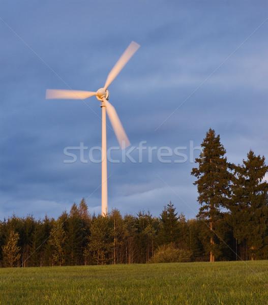 Wind generator bos top heuvel gras Stockfoto © MichaelVorobiev