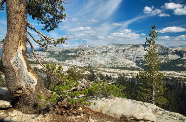 Panorâmico ver yosemite Nevada Califórnia Foto stock © MichaelVorobiev