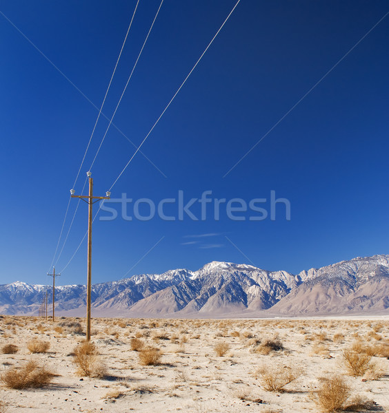 Electricity transmission in desert Stock photo © MichaelVorobiev
