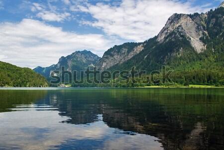 Panorámica vista lago forestales naturaleza montana Foto stock © MichaelVorobiev