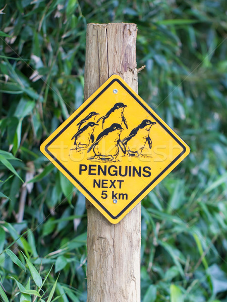Road sign caution for birds pinguins Stock photo © michaklootwijk