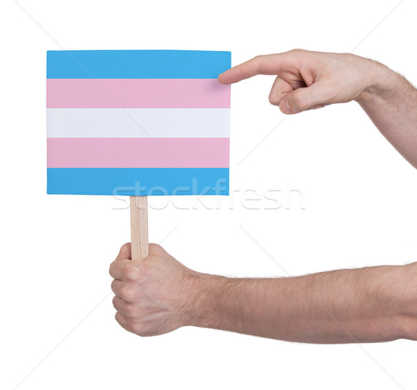 Hand holding small card - Flag of Trans Pride Stock photo © michaklootwijk