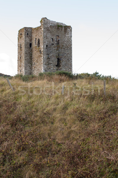 A ruin in the Irish landscape Stock photo © michaklootwijk