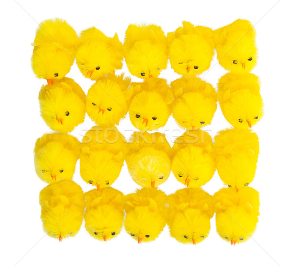 Abundance of easter chicks, top view Stock photo © michaklootwijk