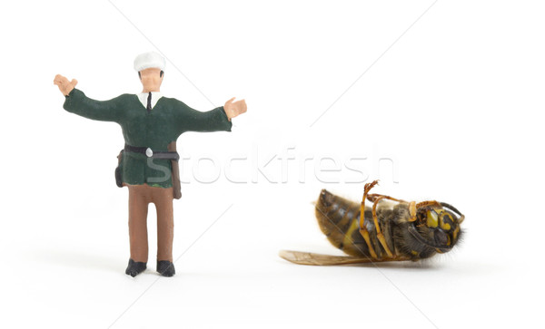 Miniature police officer guarding a crime scene - dead wasp Stock photo © michaklootwijk