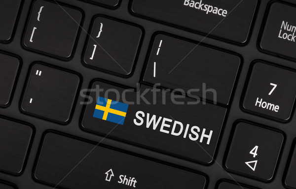 Enter button with flag Sweden - Concept of language Stock photo © michaklootwijk