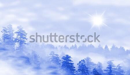 Manzara puslu orman gündoğumu gizem gün batımı Stok fotoğraf © michaklootwijk