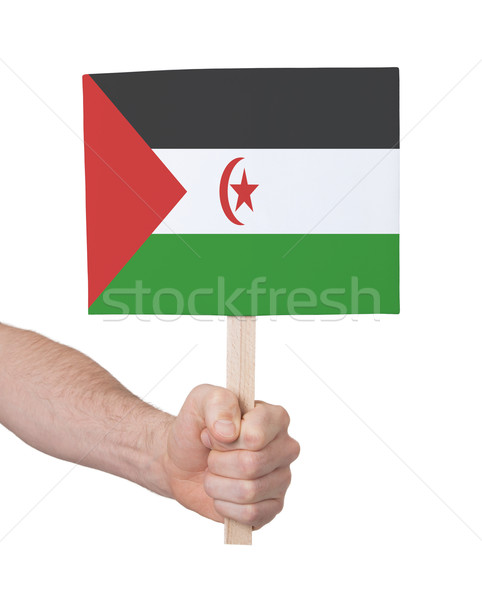 Hand holding small card - Flag of Western Sahara Stock photo © michaklootwijk