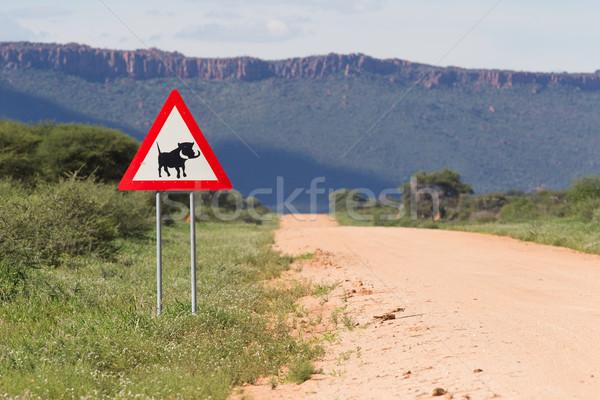 Stockfoto: Weg · teken · gevaar · waarschuwing · verkeersbord · afrika