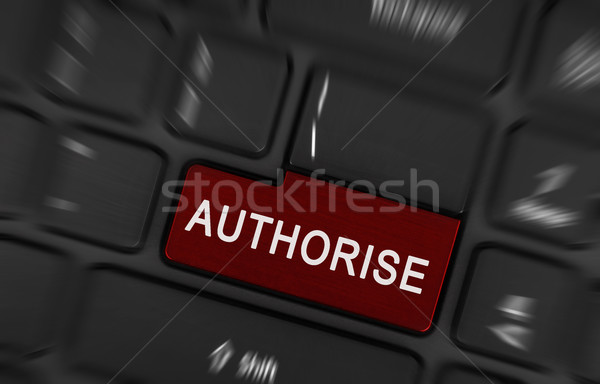 Laptop button - Authorise Stock photo © michaklootwijk