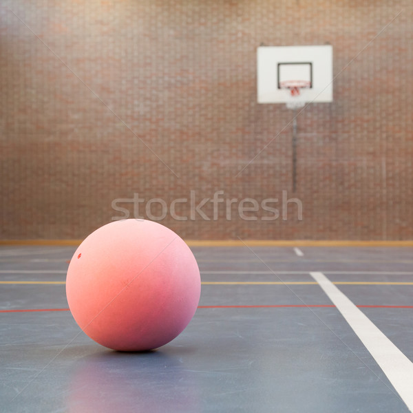 Pink ball on blue court at break time Stock photo © michaklootwijk