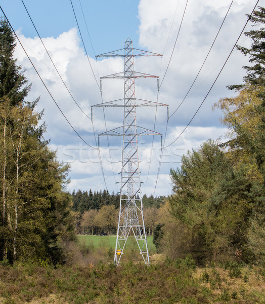 Large electric pylons Stock photo © michaklootwijk