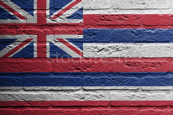 Murem malarstwo banderą Hawaii odizolowany domu Zdjęcia stock © michaklootwijk
