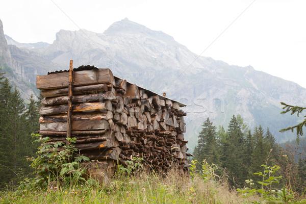 рубленый древесины ждет зима Швейцария природы Сток-фото © michaklootwijk