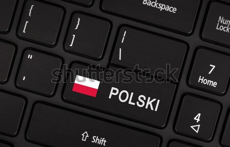 Enter button with flag Poland - Concept of language Stock photo © michaklootwijk