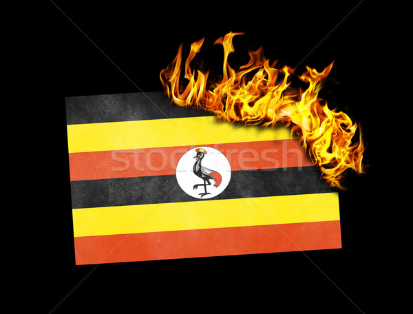 Pavillon brûlant Ouganda guerre crise feu Photo stock © michaklootwijk