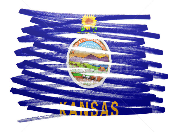 Vlag illustratie Kansas pen business verf Stockfoto © michaklootwijk