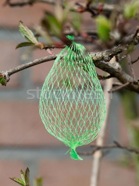 Madáreleség üres net akasztás kert szelektív fókusz Stock fotó © michaklootwijk