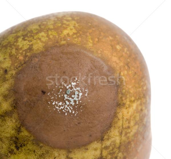 梨 白 菌 成長 孤立した ストックフォト © michaklootwijk