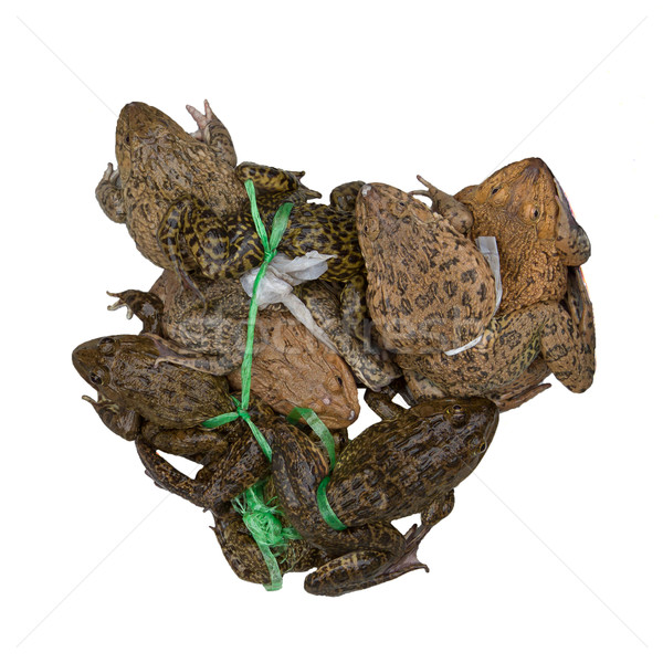Toads for consumption are being sold on a Vietnamese market Stock photo © michaklootwijk