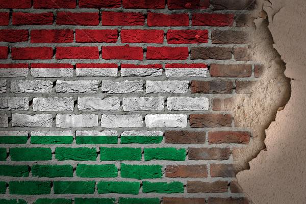 Sötét téglafal tapasz Magyarország textúra zászló Stock fotó © michaklootwijk