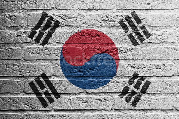 Parede de tijolos pintura bandeira Coréia do Sul isolado pintar Foto stock © michaklootwijk