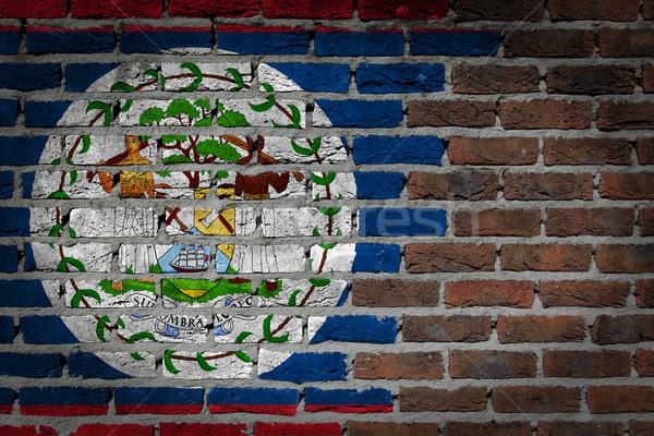 Sötét téglafal Belize textúra zászló festett Stock fotó © michaklootwijk