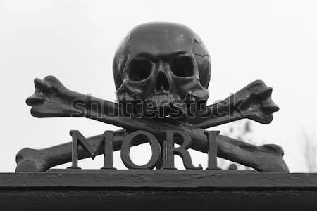 Schedel kerkhof aandenken dood silhouet vrede Stockfoto © michaklootwijk