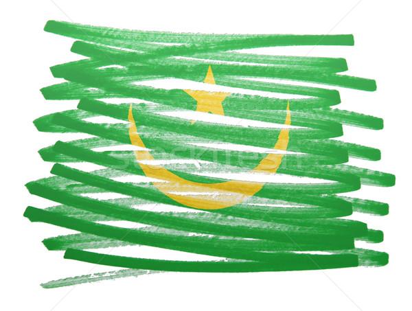 Flag illustration - Mauritania Stock photo © michaklootwijk