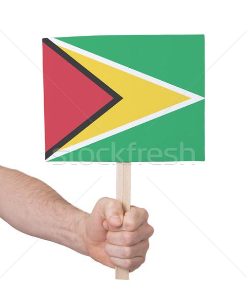Hand klein kaart vlag Guyana Stockfoto © michaklootwijk