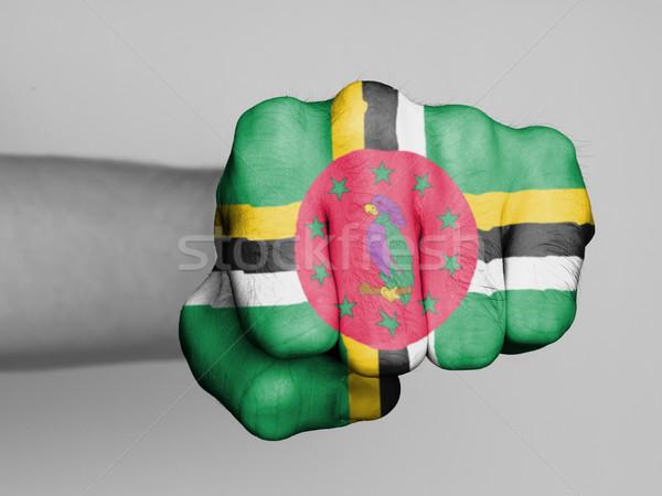 Punho homem bandeira Dominica mão cabelo Foto stock © michaklootwijk