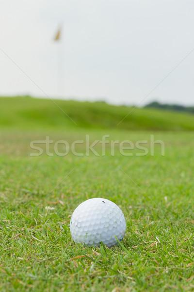 мяч для гольфа трава флаг зеленый гольф Сток-фото © michaklootwijk