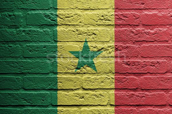 Téglafal festmény zászló Szenegál izolált festék Stock fotó © michaklootwijk