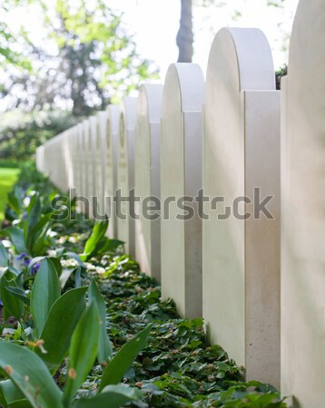 Rows of tombstones Stock photo © michaklootwijk