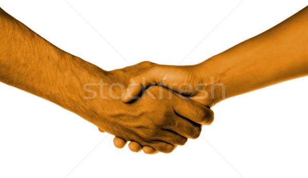 Kézfogás két személy férfi női narancs bőr Stock fotó © michaklootwijk