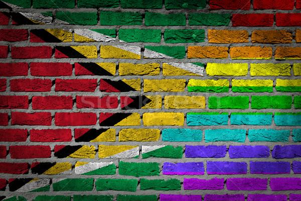 Karanlık tuğla duvar Guyana doku bayrak Stok fotoğraf © michaklootwijk