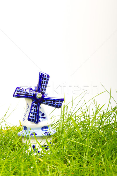 Mini porcellana mulino a vento umido erba Foto d'archivio © michaklootwijk