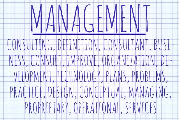 Management word cloud Stock photo © michaklootwijk