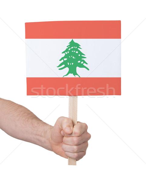 Kéz tart kicsi kártya zászló Libanon Stock fotó © michaklootwijk