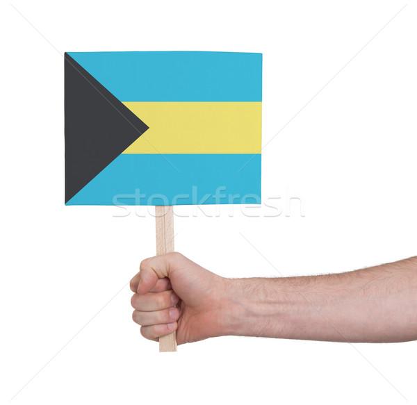 Kéz tart kicsi kártya zászló Bahamák Stock fotó © michaklootwijk