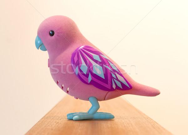 Mechanical bird for children Stock photo © michaklootwijk