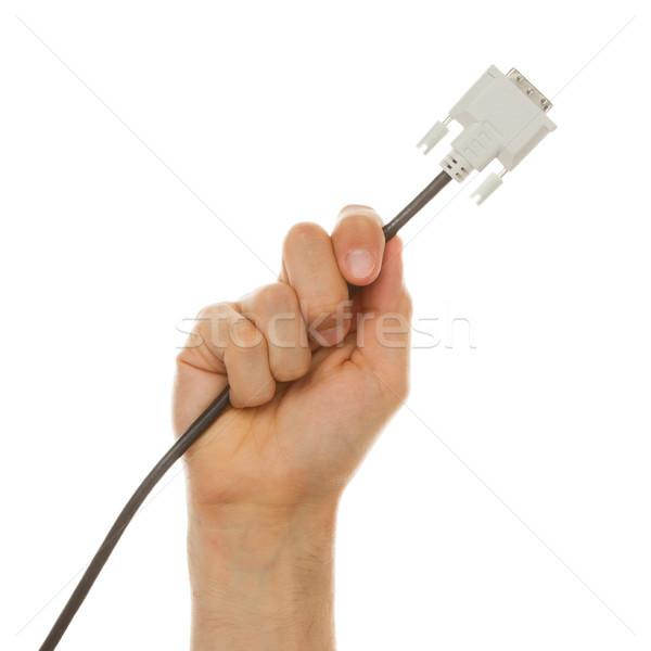 Zdjęcia stock: Strony · kabel · używany · komputerów · odizolowany