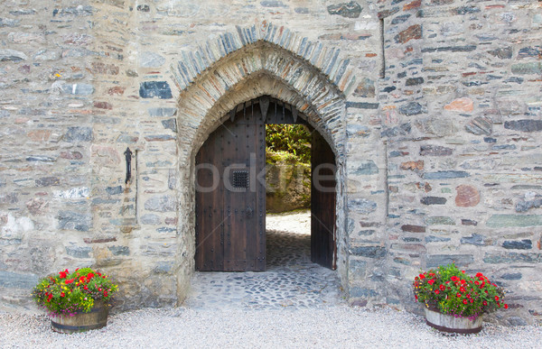 Gate of an old medieval castle Stock photo © michaklootwijk