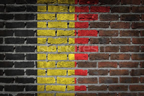 Sötét téglafal Belgium textúra zászló festett Stock fotó © michaklootwijk