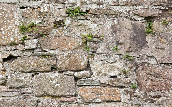 Antique natural stonewall Stock photo © michaklootwijk